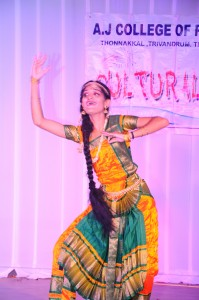 Cultural Day 2016
